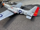P 51 OLD CROW